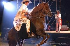gala-caballo-4